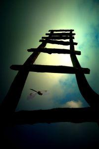 Seis Virtudes: Trascendencia
