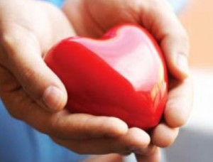 manejo cardiovascular